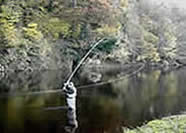 The D loop (so called because of the shape of the rod & fly line behind the angler).